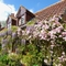 Snaptrip - Last minute cottages - Charming Fakenham Cottage S41260 -