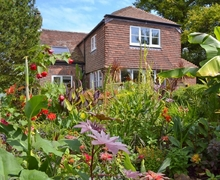 Snaptrip - Last minute cottages - Gorgeous Hastings Cottage S42568 -