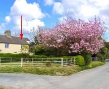 Snaptrip - Last minute cottages - Tasteful Dover Cottage S4448 -