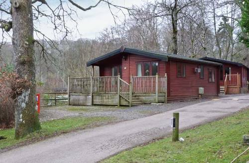Snaptrip - Last minute cottages - Attractive Windermere Lodge S4452 -