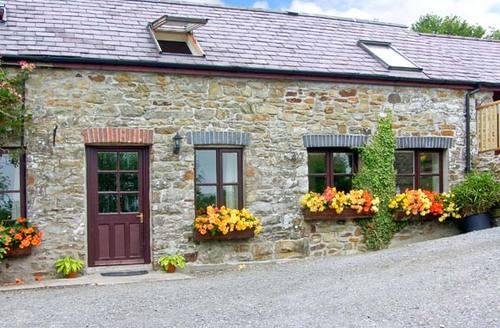 Snaptrip - Last minute cottages - Charming Llandysul Cottage S4723 -