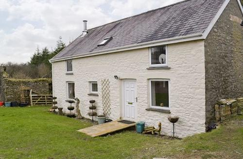 Snaptrip - Last minute cottages - Luxury Carmarthen Cottage S45169 -