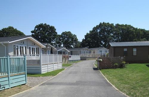 Snaptrip - Last minute cottages - Luxury Hastings Lodge S45783 -