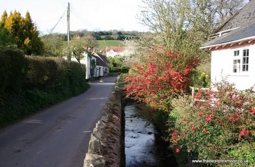 Snaptrip - Last minute cottages - Delightful  Cottage S45890 -