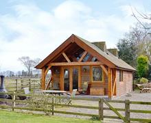 Snaptrip - Holiday cottages - Lovely Montrose Lodge S45999 -