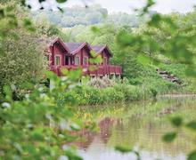 Snaptrip - Last minute cottages - Stunning Upottery Lodge S52159 - Otter Island Lodge