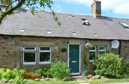 Snaptrip - Last minute cottages - Tasteful Dunbar Cottage S6206 -