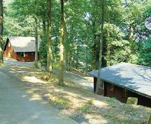 Snaptrip - Last minute cottages - Wonderful Garthmyl Lodge S52414 - The woodland setting