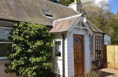 Snaptrip - Last minute cottages - Delightful Selkirk Corses S6367 -