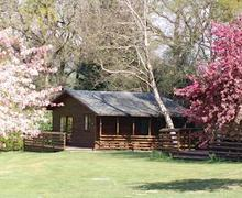 Snaptrip - Last minute cottages - Splendid Ruthernbridge Lodge S55386 - Ruthern Lodge 5