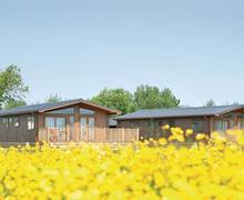 Snaptrip - Last minute cottages - Quaint Burnham On Sea Lodge S55799 - The lodge setting