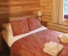 Snaptrip - Last minute cottages - Beautiful Nr Morpeth Lodge S56628 - Typical Bolam Lodge
