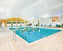 Snaptrip - Last minute cottages - Stunning Paignton Lodge S56819 - Indoor heated pool<br />
