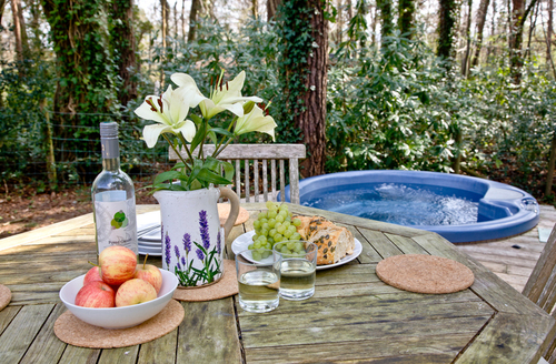 Snaptrip - Last minute cottages - Delightful Bovey Tracey Lodge S9654 -