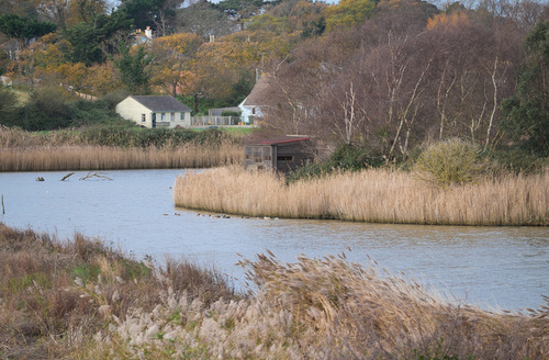 Snaptrip - Last minute cottages - Superb Seaview Rental S24980 -