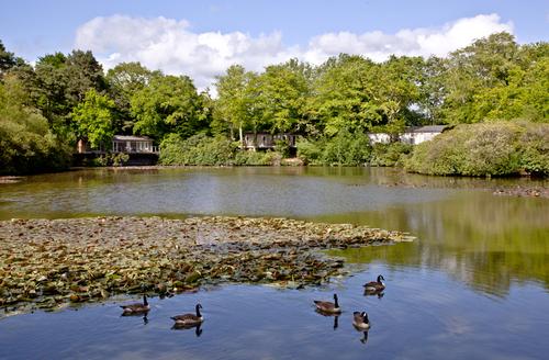Snaptrip - Last minute cottages - Splendid Bovey Tracey Rental S25605 -
