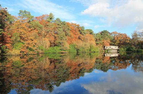 Snaptrip - Last minute cottages - Splendid Bovey Tracey Rental S25627 -