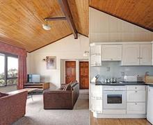 Snaptrip - Last minute cottages - Excellent Laugharne Lodge S58161 - Typical Silver Lodge<br />