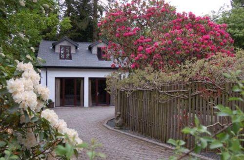 Snaptrip - Last minute cottages - Luxury Ambleside Mews S275 - Stonegarth Mews, Grasmere, Lakes Cottage Holidays