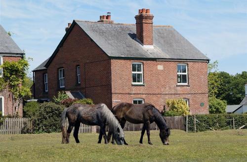Snaptrip - Last minute cottages - Charming Brockenhurst Cottage S58836 - A290_exterior