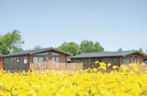 Snaptrip - Last minute cottages - Cosy Burnham On Sea Lodge S59021 - The lodge setting