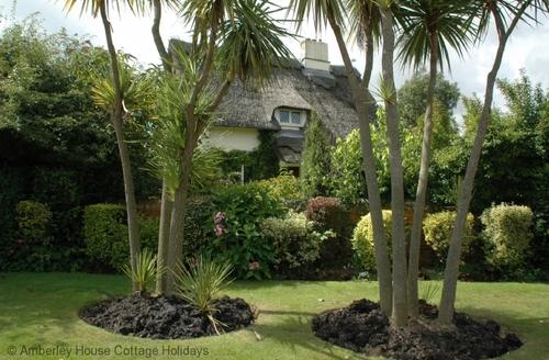 Snaptrip - Last minute cottages - Luxury Bognor Regis Cottage S60751 -