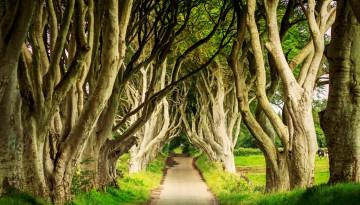 Armoy, Ireland