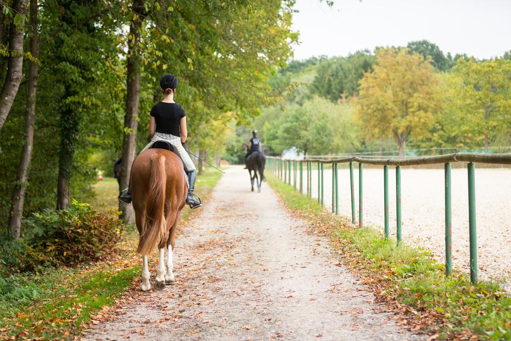 lovey dovey horseback ride