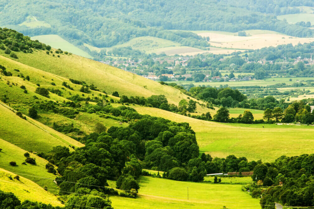 Brave the South Downs Way Trail when you visit South Downs