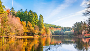 Take in breathtaking views when you visit Forest of Dean