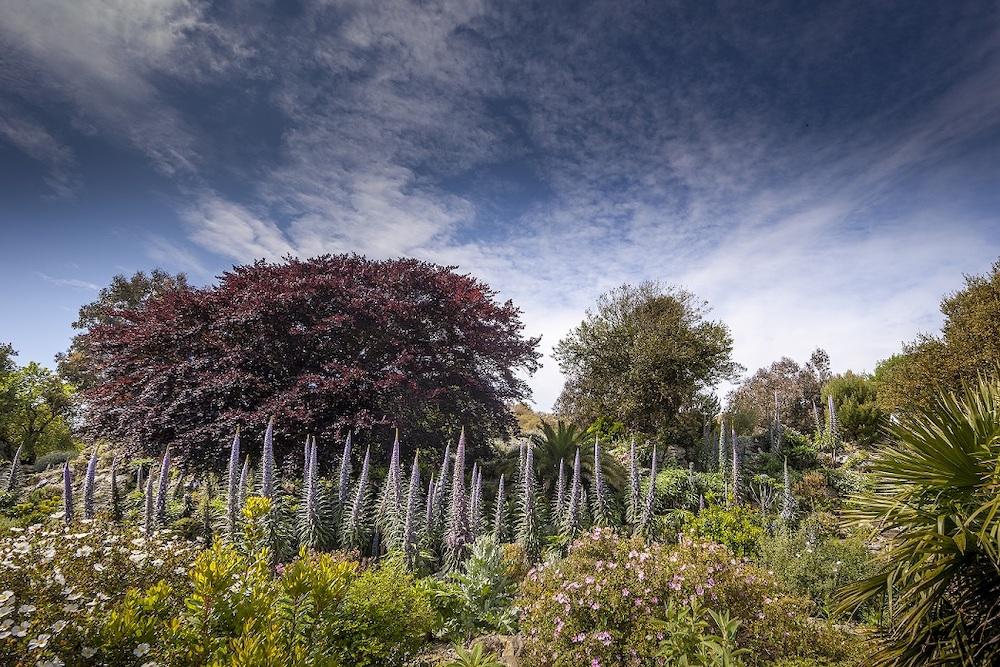Vetnor Botanic Garden