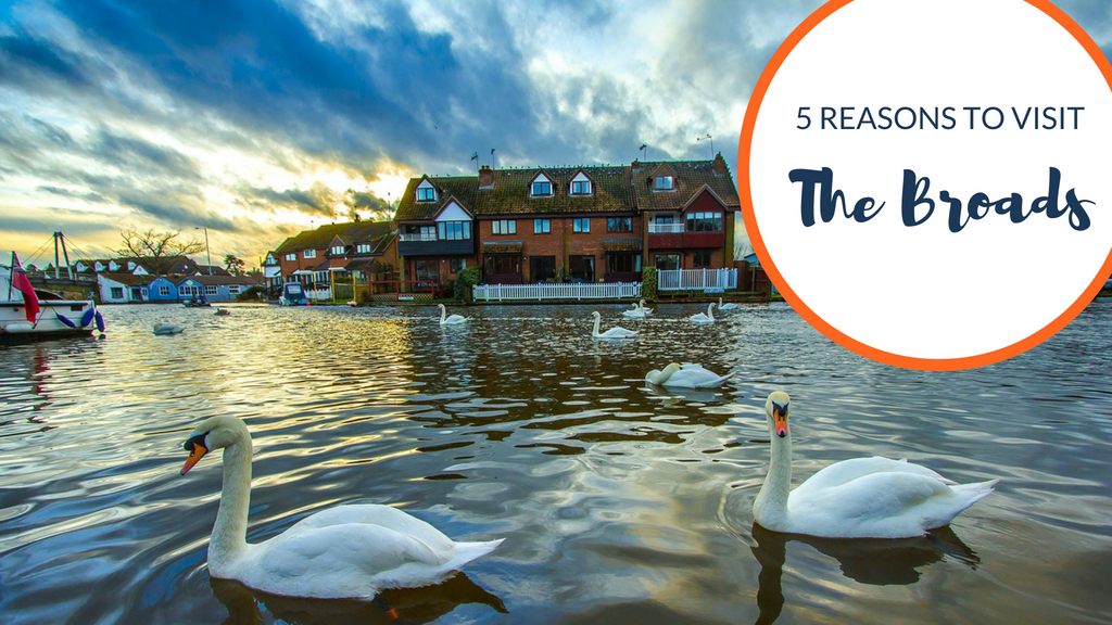 5 reasons everyone should visit the Broads