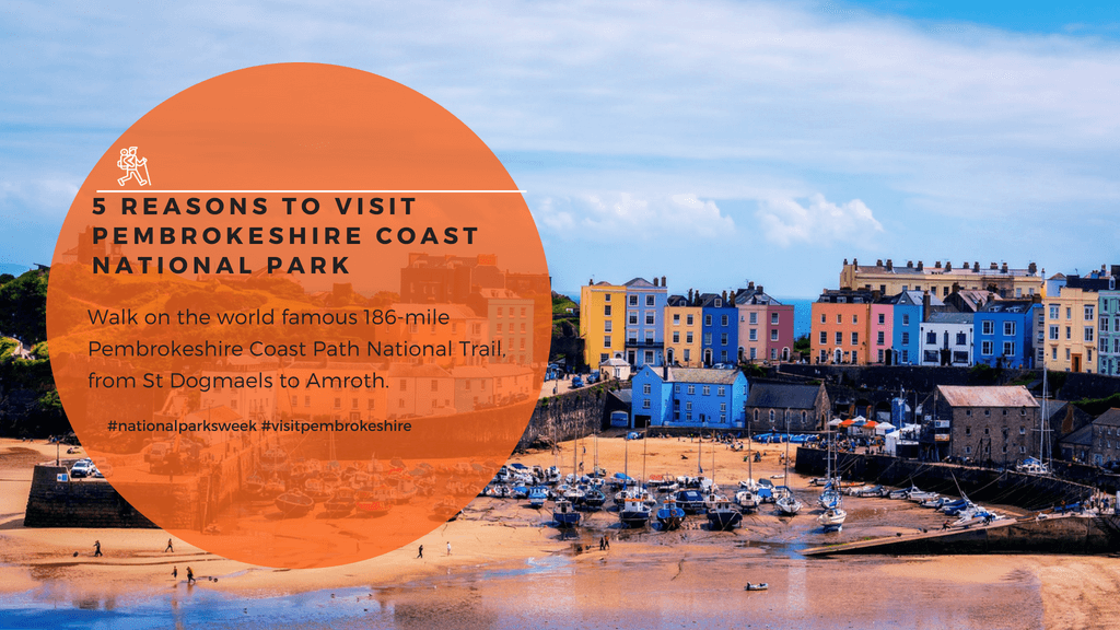 5 reasons to visit Pembrokeshire Coast National Park