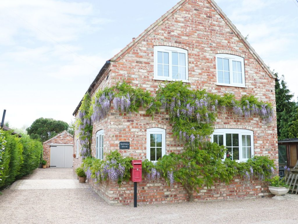 Brick cottage with wisteria growing up the outside.