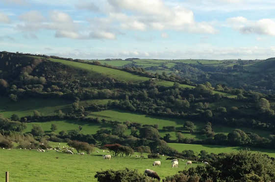 Exmoor travel guide