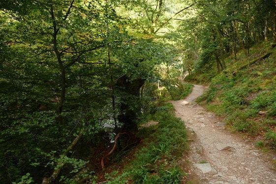 Exmoor travel guide