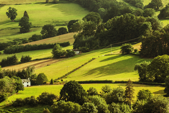 Powys travel guide