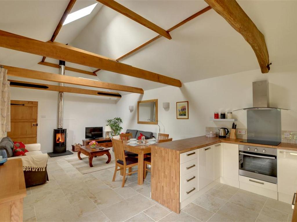 Open plan living room / kitchen with a wood burner