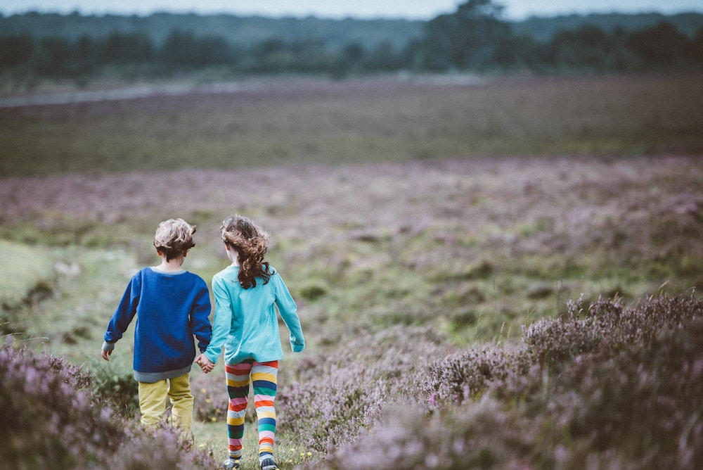 CNP are reliant on support from people like you to continue their work protecting our National Parks. Become a friend for £3 a month and not only will you be helping a brilliant cause but there are some other great benefits too.