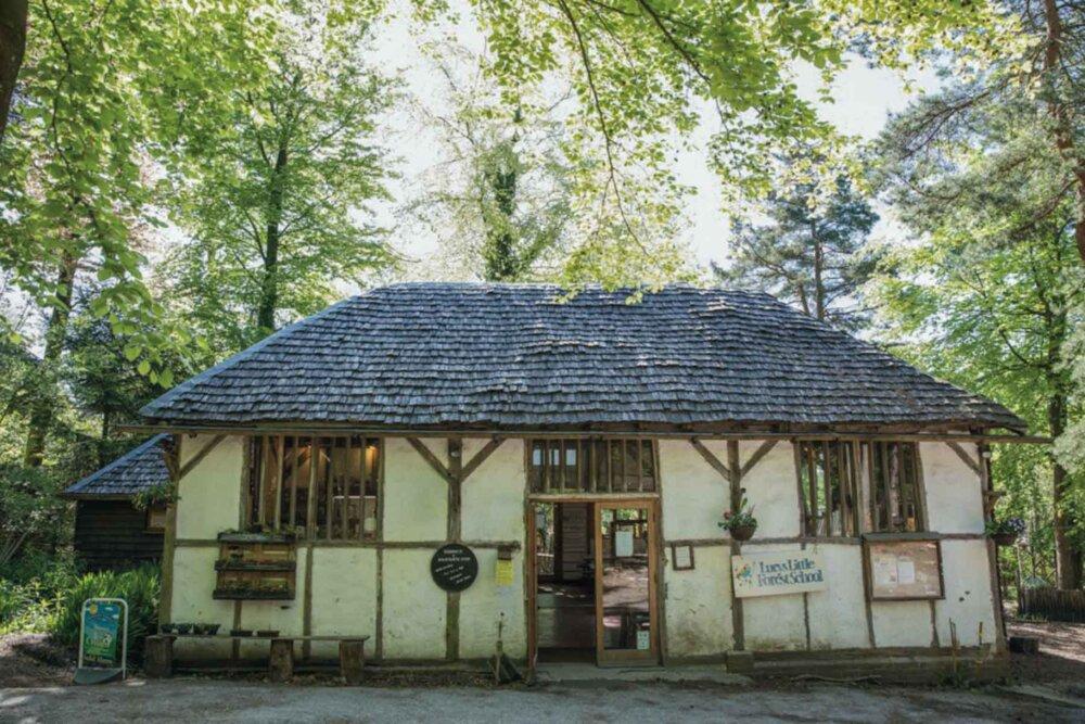 Wilderness Woods Café